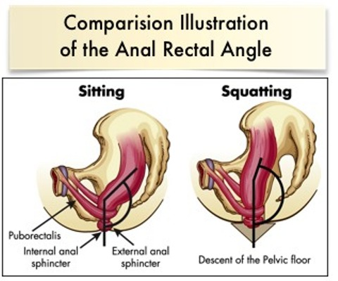 anorectal-angle (1)